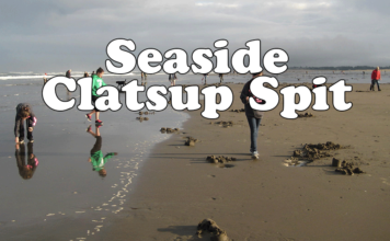 Seaside Clatsup Spit