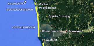Washington Razor Clamming Beaches