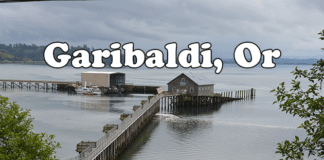 Tillamook Garibaldi