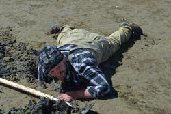 Gaper Clam Dig
